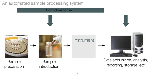 Automated sample processing