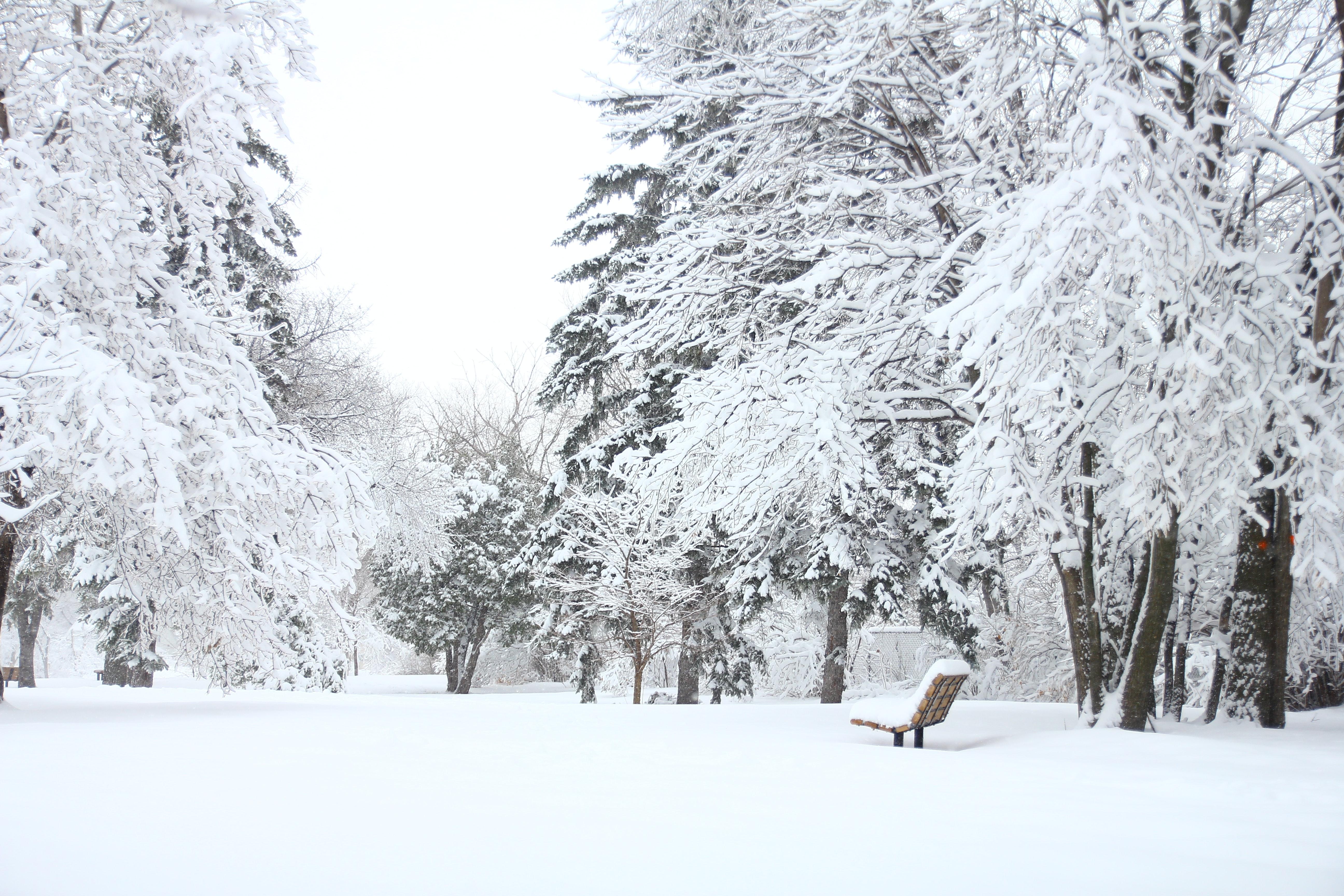 Winterize Your Laboratory